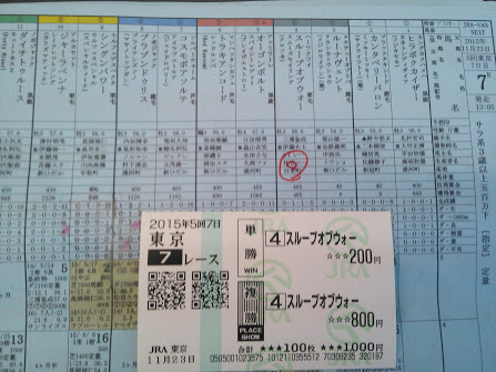 2015年11月23日東京競馬場7R馬券