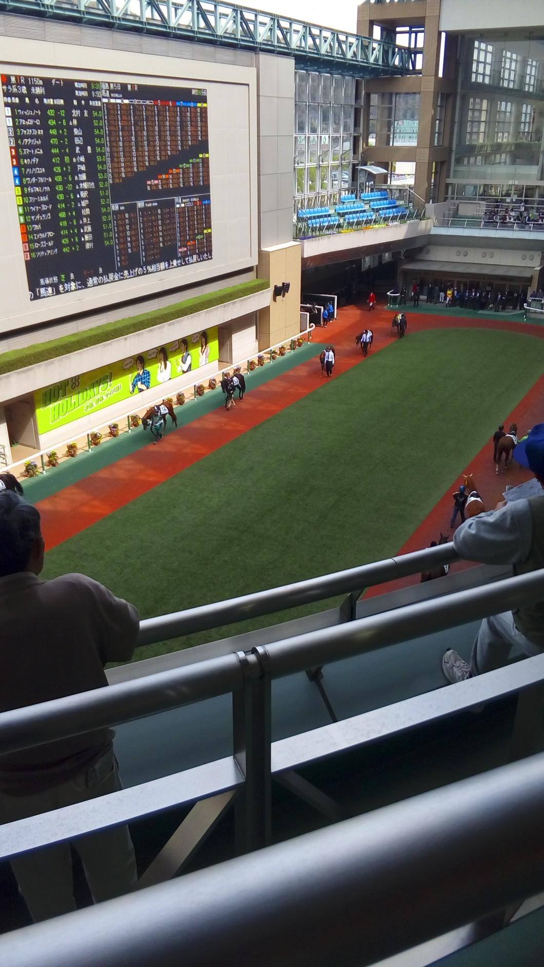 福島牝馬S2017パドック