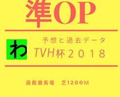 TVh杯2018キャッチ