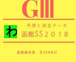 函館SS2018キャッチ