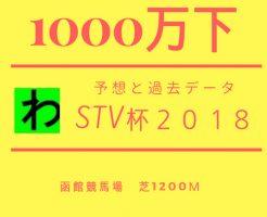 STV2018キャッチ