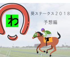 葵S2018キャッチ