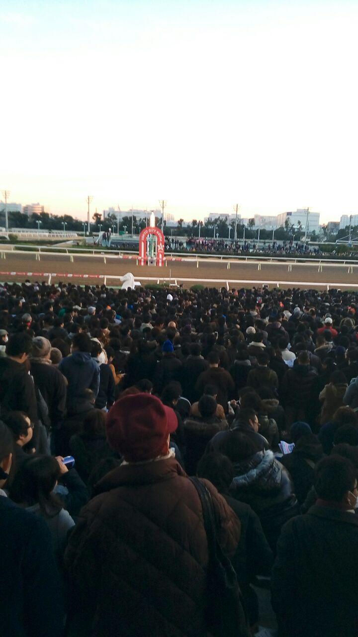東京大賞典2016ゴール前