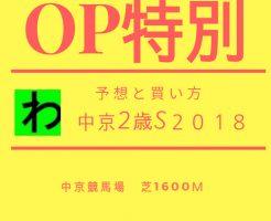 中京2歳S2018キャッチ