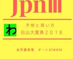 白山大賞典2018キャッチ