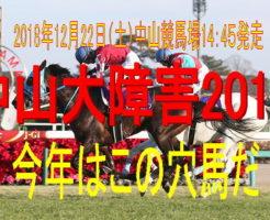 中山大障害2018キャッチ