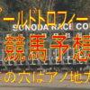 兵庫ゴールドトロフィー2018予想(園田競馬)1頭に絞れた勝ち馬候補のデータ