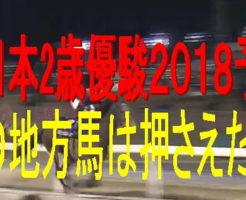 全日本2歳優駿2018キャッチ