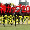 阪神カップ2018【競馬予想】13頭が消えて4頭が残った!後は買い方勝負