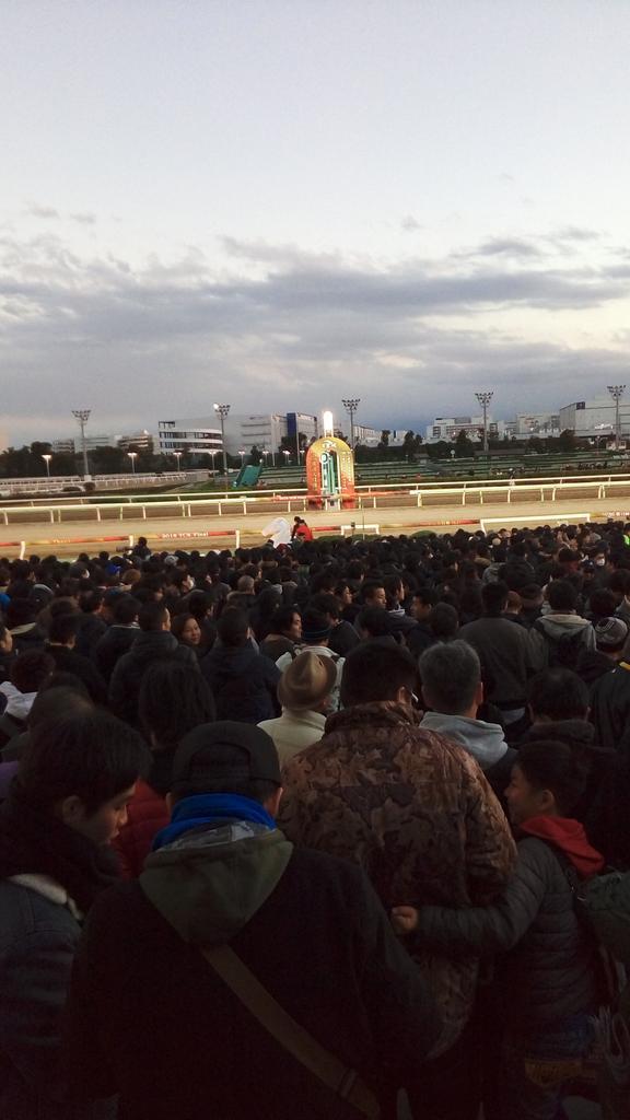東京大賞典2018レース後