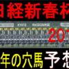 日経新春杯2019【競馬予想】