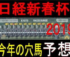 日経新春杯2018キャッチ