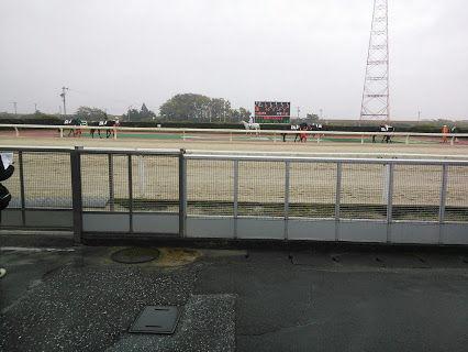 笠松競馬場パドック