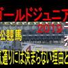 ゴールドジュニア2019予想(笠松競馬)