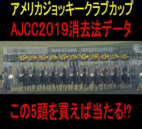 AJCC2019キャッチ