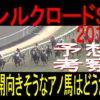 シルクロードステークス2019競馬予想|展開向きそうなアノ馬から