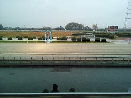 笠松競馬場コース
