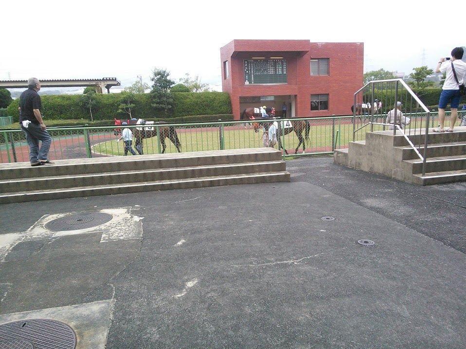佐賀競馬場パドック