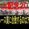 中山記念2019消去法データ