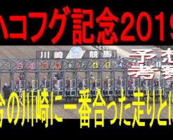 ハコフグ記念2019キャッチ