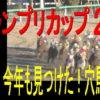 報知グランプリカップ2019予想(船橋競馬)