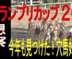 報知グランプリカップ2019キャッチ