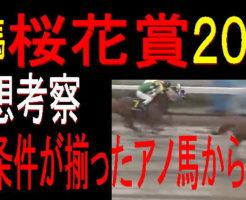 桜花賞(浦和)2019キャッチ