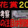 桜花賞2019予想|今年の注目は別路線馬