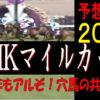 NHKマイルカップ2019消去法データ(過去10年)