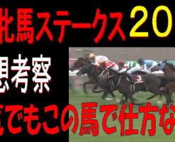 阪神牝馬S2019キャッチ