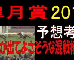 皐月賞2019キャッチ