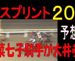 東京スプリント2019キャッチ