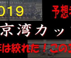 東京湾C2019キャッチ