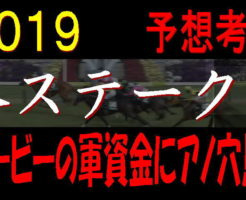 葵S2019キャッチ