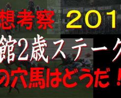 函館2歳S2019キャッチ