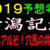 新潟記念2019消去法データ(過去10年)