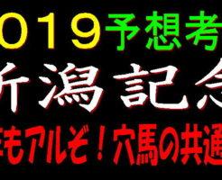 新潟記念2019キャッチ