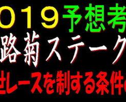 野路菊S2019キャッチ