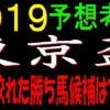 東京盃2019(大井競馬)予想|1頭に絞れた勝ち馬候補はアノ馬!