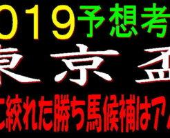 東京盃2019キャッチ