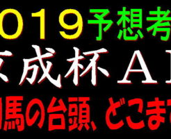 京成杯AH2019キャッチ