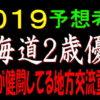 北海道2歳優駿2019予想(門別競馬)|地元勢が健闘してる地方交流重賞です