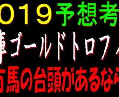兵庫ゴールドトロフィー2019キャッチ