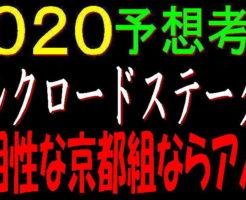 シルクロードS2020キャッチ