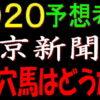 東京新聞杯2020競馬予想|アノ穴馬はどうだ!?