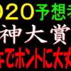 阪神大賞典2020消去法データ(過去10年)