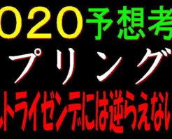 スプリングS2020キャッチ