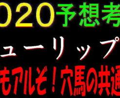 チューリップ賞2020キャッチ