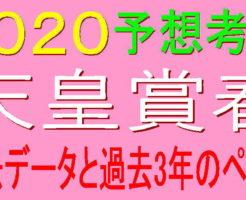 天皇賞春2020キャッチ1