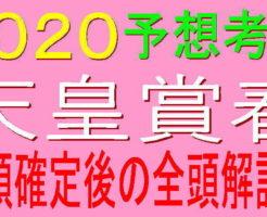 天皇賞春2020キャッチ2